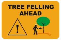 Tree Felling Ahead sign
