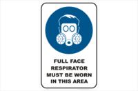 Full Face Respirator