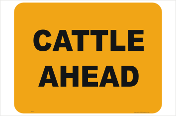 Cattle Ahead