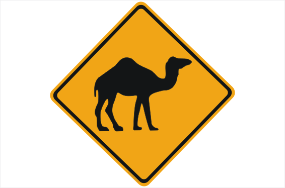 Camel Road sign