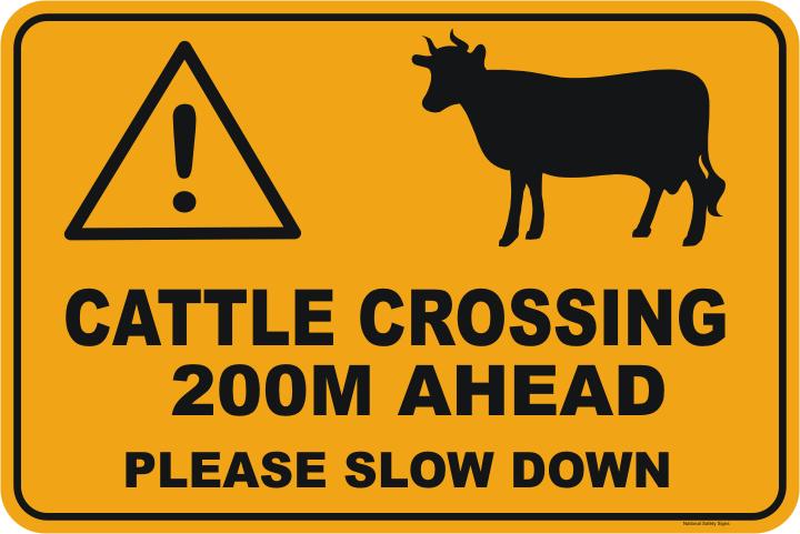 Cattle Crossing Ahead 200m